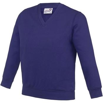 Textiel Kinderen Sweaters / Sweatshirts Awdis Academy Paars